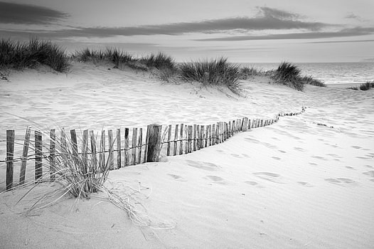 grassy-sand-dunes-landscape-at-sunrise-in-black-and-white-matthew-gibson